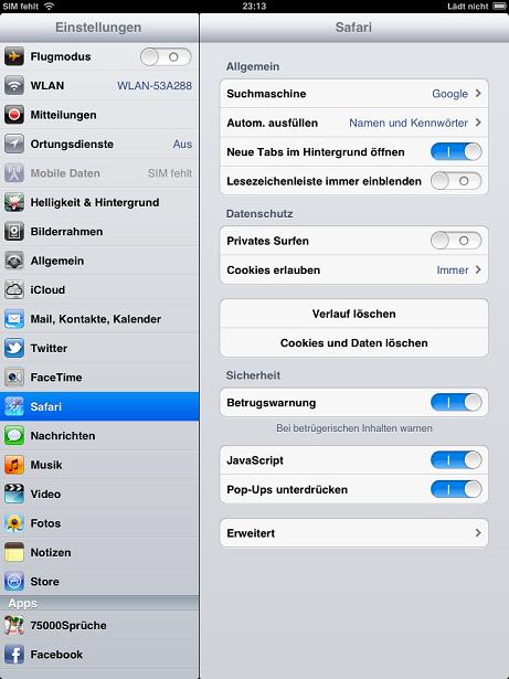 Cache im Safari auf dem iPad leeren